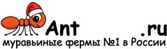 Муравьиные фермы AntFarms.ru - Кострома
